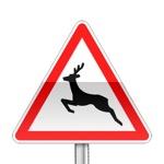 Panneau de danger annonçant le passage d'animaux sauvages