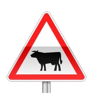 Panneau de danger annonçant le passage d'animaux domestiques