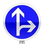 Panneau de direction obligatoire à la prochaine intersection : tout droit ou à droite
