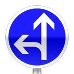 Panneau de direction obligatoire à la prochaine intersection : tout droit ou à gauche